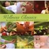 Picture of Wellness Classics 10 CD Box Set
