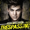 Picture of Adam Lambert - Trespassing [Sliderpack]
