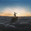 Picture of Pink Floyd - The Endless River [VINYL] 2 LP