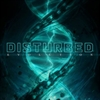 Picture of Disturbed - Evolution